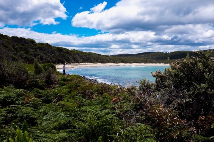 DSCF8235 bruny lighthouse beach